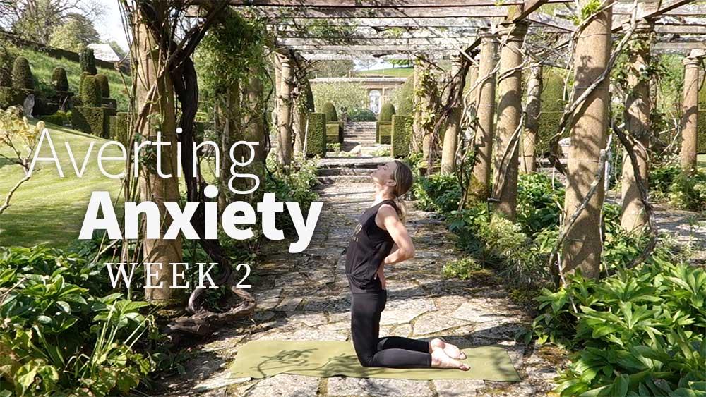 Averting Anxiety week 2