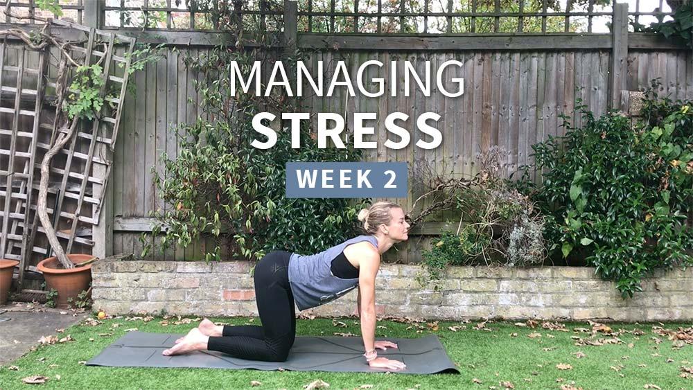 Managing Stress 2 - Week 2