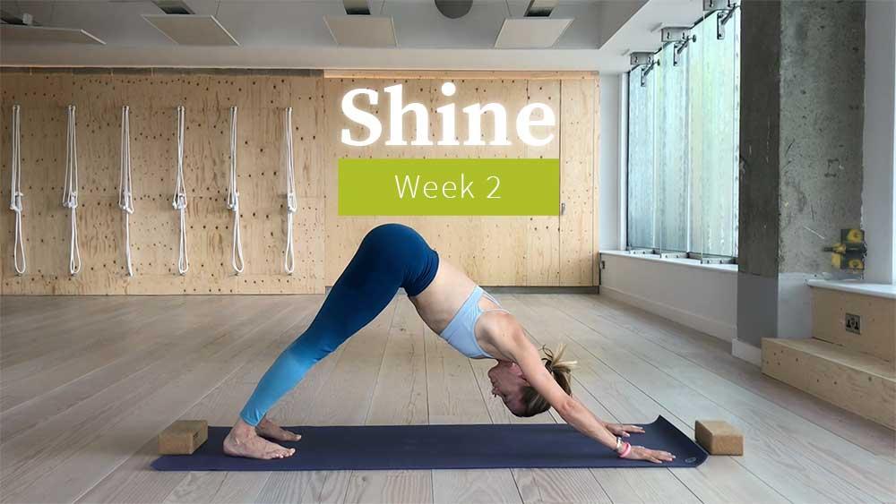 Shine week 2